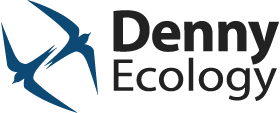 Denny Ecology